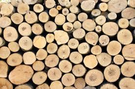 assiettes en bois diy en cours des rondelles de bois pour les tables de fêtes c