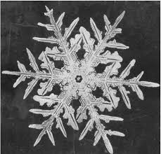 snowflake bentley every crystal a masterpiece of design u201d holy waters by diana rico