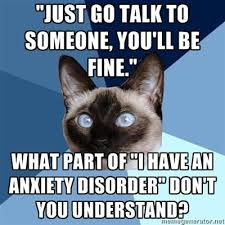 Anxiety Cat Meme - lol anxiety cat i find this even funnier because this cat looks