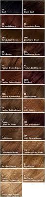 light golden brown hair color chart medium golden brown hair color hair did pinterest golden brown