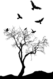 tattoo tree bird bing images pinturas pinterest tattoo