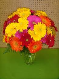 balloon delivery huntsville al v48 the wow factor mixed gerber daisies 50 count in huntsville al