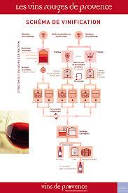 cuisine et vin vins rouges de provence schéma de vinification cuisine et vins