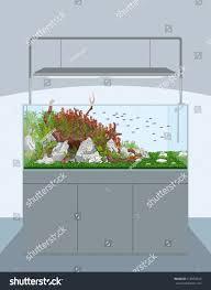 aquarium natural aquarium fish plants home stock vector 518950828
