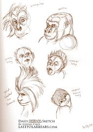 daily animal sketch u2013 primates u2013 last of the polar bears