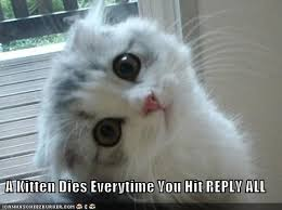 a kitten dies everytime you hit reply all cheezburger funny
