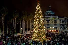 bay area christmas tree and menorah lightings events