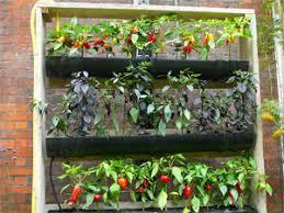 How To Build A Vertical Garden - garden design garden design with how to make a vertical garden