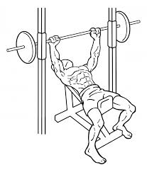 Incline Bench Technique Smith Machine Incline Bench Press Everkinetic