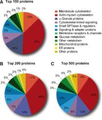 what can proteomics tell us about platelets circulation research