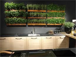 stunning kitchen garden indoor 17 best ideas about indoor
