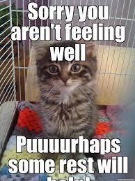 Well Meme - get well soon kitty weknowmemes generator