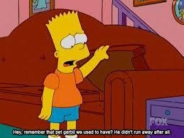 Bart Simpson Meme - 267 best the simpsons images on pinterest funny stuff simpsons