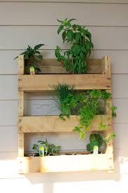 planting an apartment friendly herb garden u2022 charleston crafted