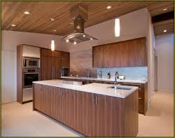 extraordinary natural walnut kitchen cabinets finish home design