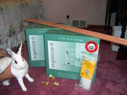 Make Rabbit Hutch How To Build An Indoor Bunny Cage