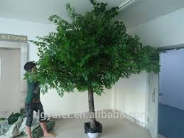 different types of plants and trees outdoor artificial evergreen