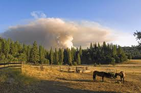 Fire Evacuations Saskatchewan by Homeowners In High Fire Risk Areas Are Upset Over Soaring