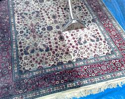 Area Rugs Syracuse Ny Area Rug Cleaning Ny Rug Different Fabrics All Green