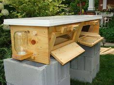 Top Bar Beehive Plans Free Parts Of A Beehive What You Really Need Beehive Bees And Bee