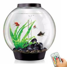 biorb classic 60l 16g all in one acrylic aquarium w multicolor