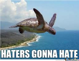 Turtle Memes - flying turtle by dontscam meme center