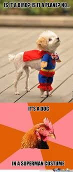 Anti Joke Chicken Meme - damn you anti joke chicken by sheeppusher meme center