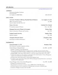 sle resumes for banking professional resumes simple and investment banking resume sle