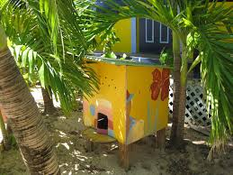 Cateracterum Palm by Cat Cafes U0027 With Tnr Caribbean Style Nj Com