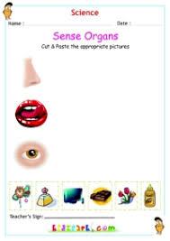 sense organs evs worksheet for cbse and icse