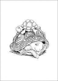 25 water turtles ideas turtle tanks sea