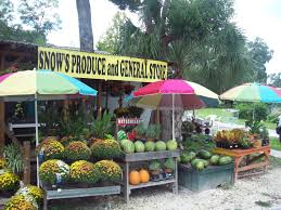 Market Stall Canopy by Snow U0027s Country Market In Holder Fl Has The Best Fresh Local