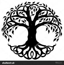 celtic tree of life drawing trends pinterest celtic tree and