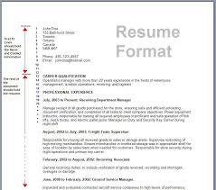 totally free resume forms really free resume templates 7 free resume templates primer