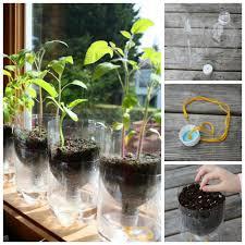 diy self watering herb garden wonderful diy cutting glass bottles for self watering planter