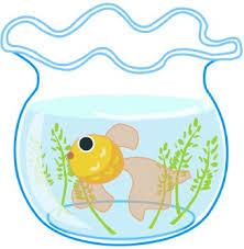fish bowl free fishbowl coloring pages clip art image clip art