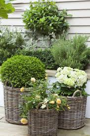 minimslist small garden ideas for backyard gardening in a space