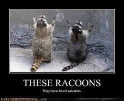 Funny Meme Animals - very demotivational animals very demotivational posters start