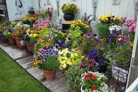pot garden ideas gardening ideas