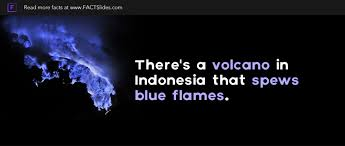 indonesia facts 15 facts about indonesia factslides