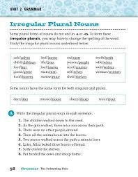 irregular plural nouns worksheets worksheets