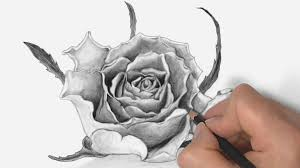 100 pencil sketch of a flower how to draw a lily pad