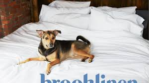 bed sheet quality brooklinen all the quality only a fraction of the price by rich