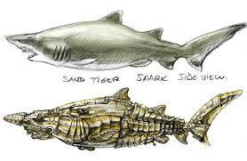 industrial shark sketch by otas32 on deviantart