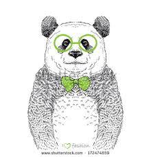panda drawing stock images royalty free images u0026 vectors