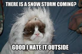 Snowstorm Meme - meh blizzard memes popsugar tech photo 2