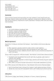 Resume Examples For Administrative Assistant Entry Level by Professional Ecommerce Business Analyst Templates To Showcase Your