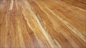 Bamboo Flooring Vs Hardwood Living Room Marvelous Solid Bamboo Flooring Pros And Cons Solid