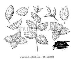 draw stock images royalty free images u0026 vectors shutterstock
