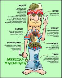 S Meme - of medical marijuana stoner hippy weed memes